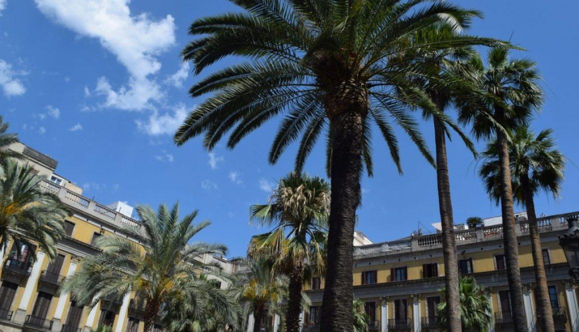 Voyage au coeur de l'enivrante Barcelone