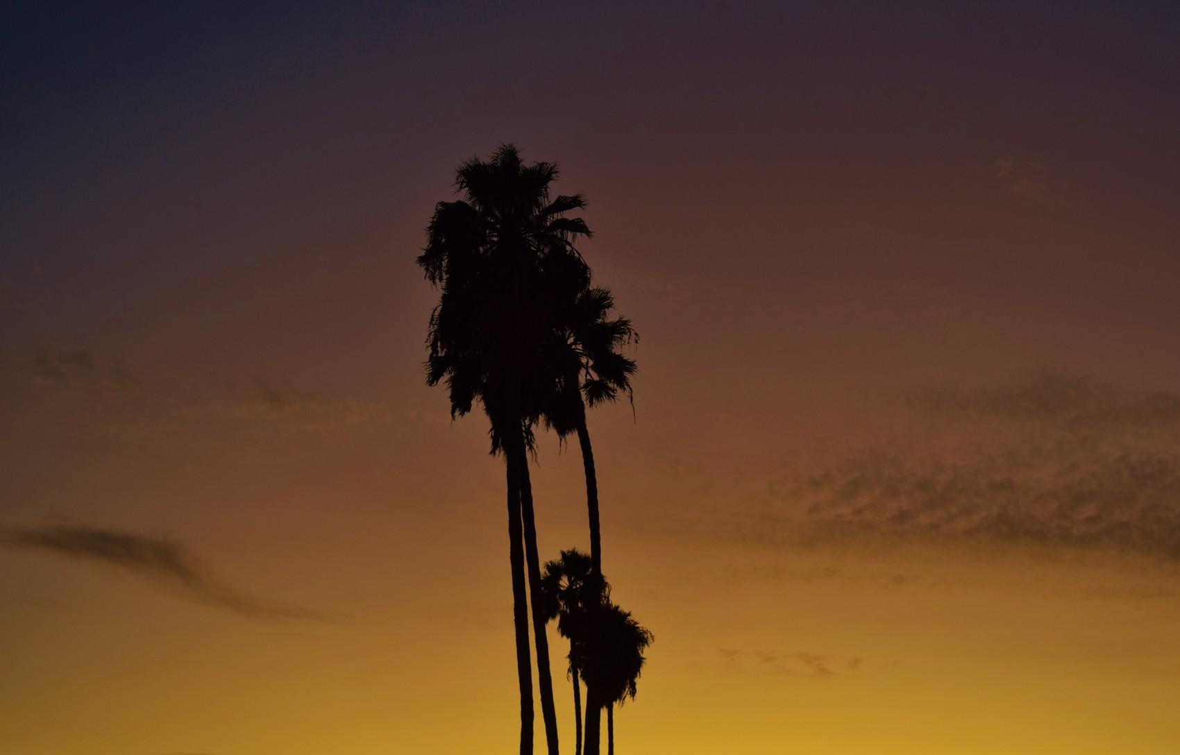 Los Angeles, découverte tout en contrastes