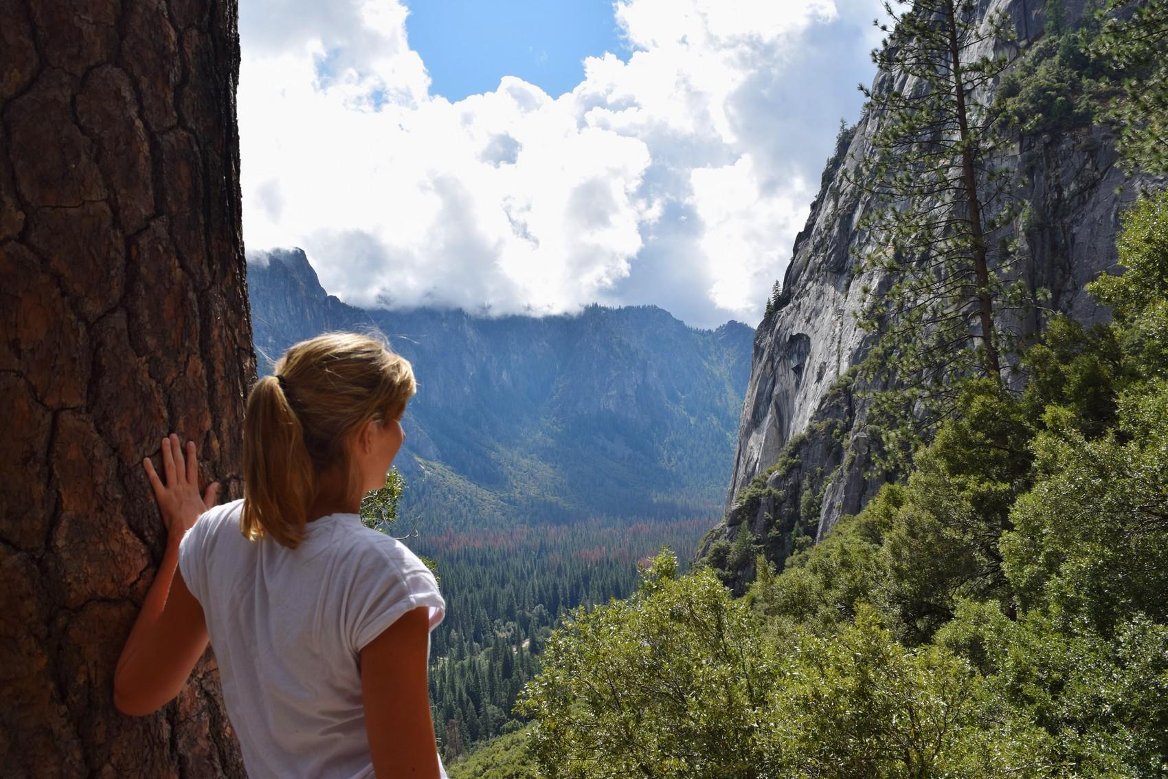 Voyage au coeur de la nature à Yosemite National Park